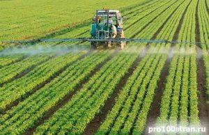 Робота в Польщі в сільському господарстві
